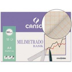 Papel milimetrado Canson con 12 hojas de papel con lineas marron